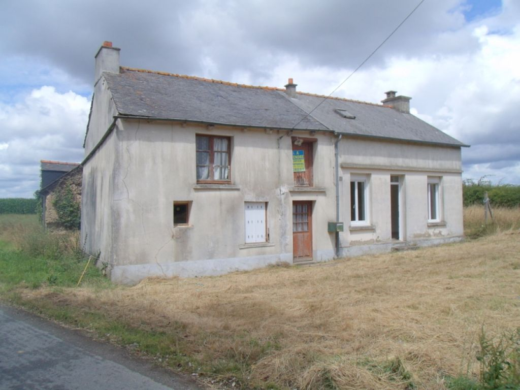 Renovation project: detached house and stone outbuilding!