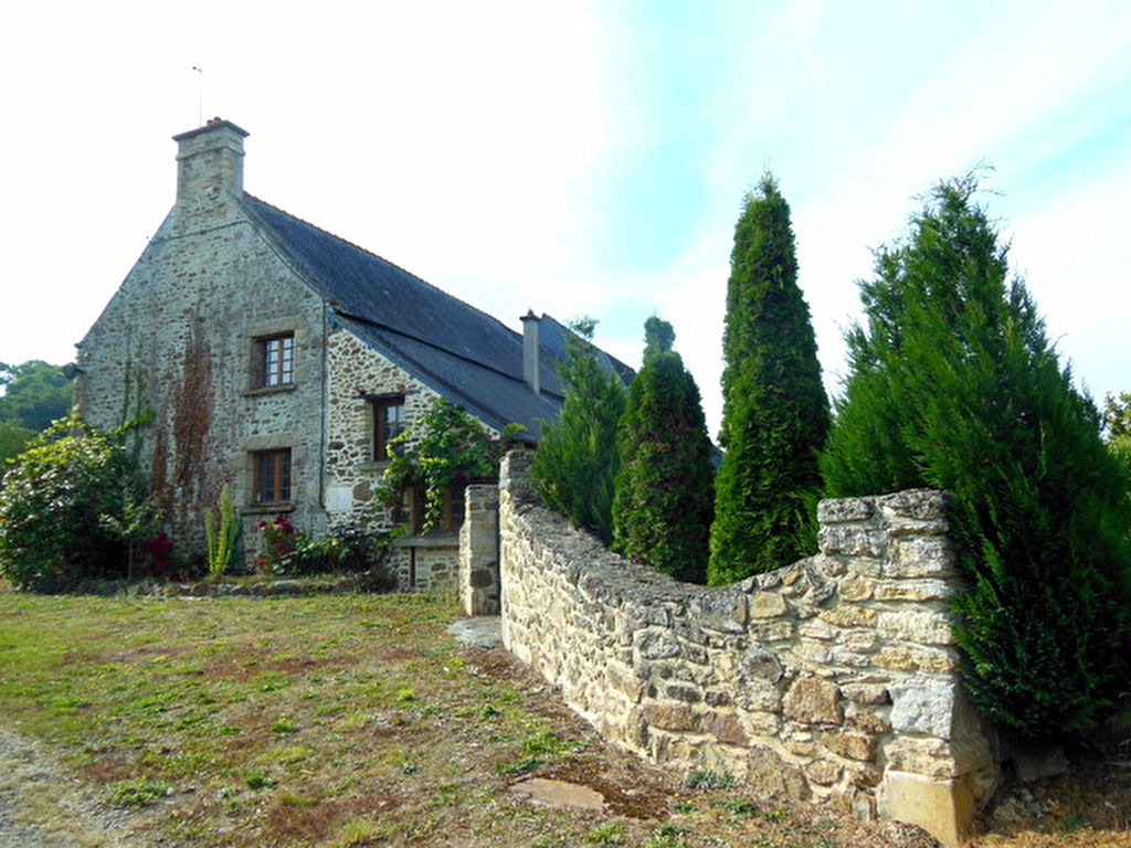 Substantial 5 bed stone built house with swimming pool and 1.3 hectares