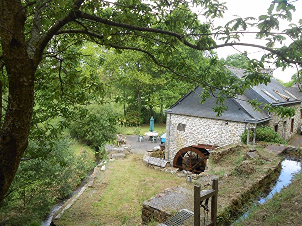 Converted mill with large plot of land and gîte