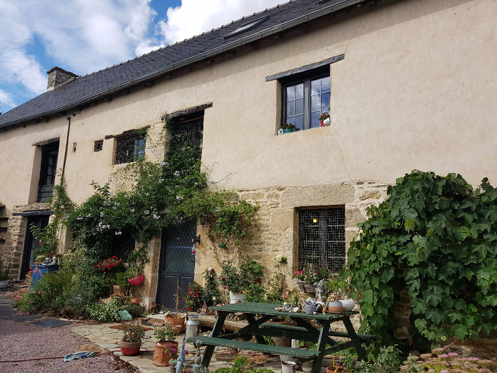 10 mins Dinan: Detached property with gite, in peaceful contryside