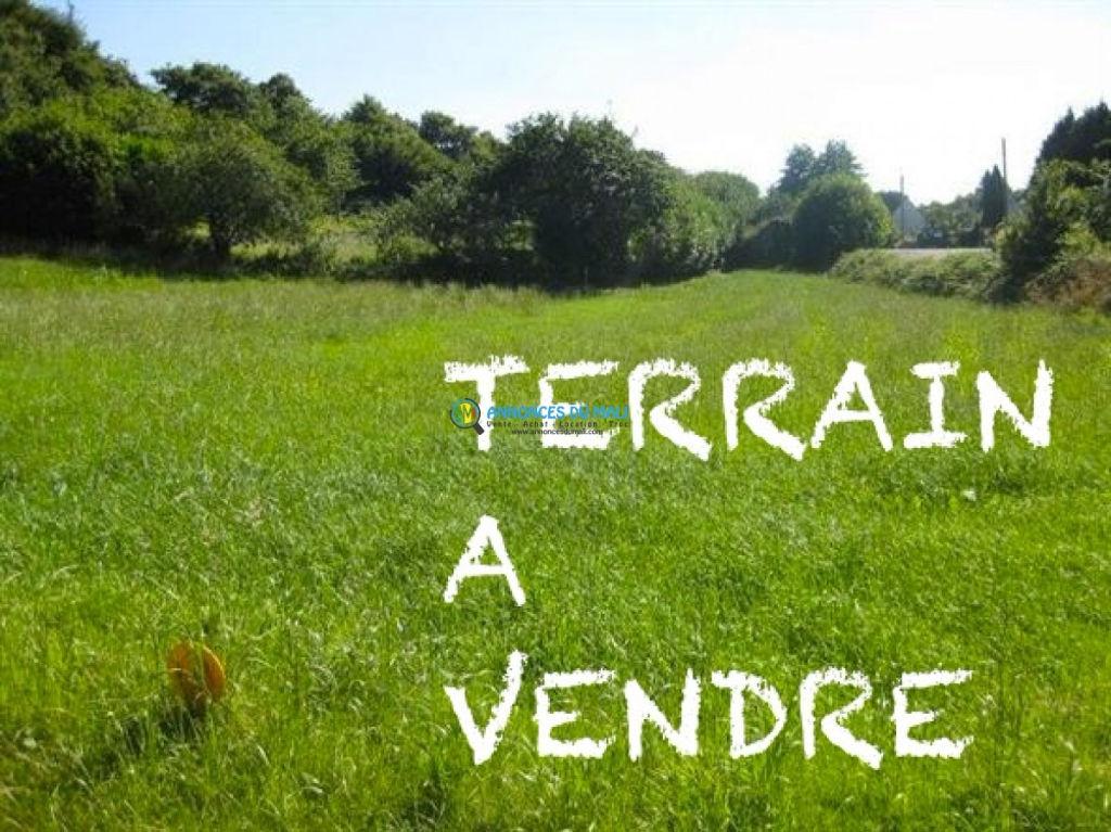 Terrain Tresse 959 m2